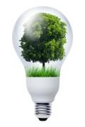 De investeringsaftrek is bedoeld voor bedrijven die investeren in duurzame energie door energiebesparende bedrijfsmiddelen aan te schaffen.©by-studio - Fotolia